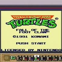 SGB Titel Turtles FotFC 01