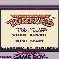 SGB Titel Turtles FotFC
