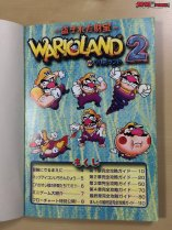 Wario Land 2 Strategy Guide Book 3