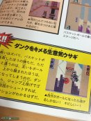 Wario Land 2 Perfect Guide Book Exemplar 3 (5)