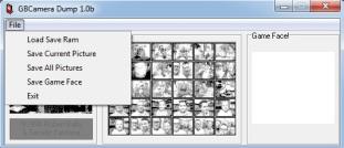 GB Camera Dump 02