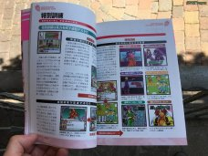 Sakura Wars Games Guide 2