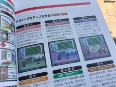 Sakura Wars Games Guide 3