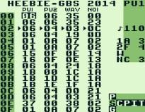 ASM Heebie GBS 2014 (3)
