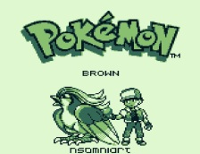 Pokemon Brown Version (1)