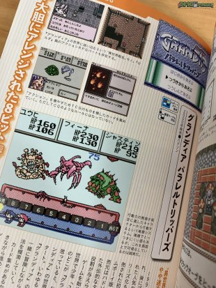 Pokemon and Game Boy RPG Buch_06