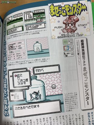 Pokemon and Game Boy RPG Buch_08