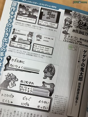 Pokemon and Game Boy RPG Buch_09